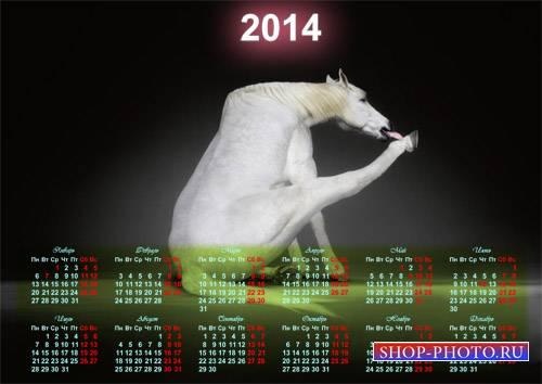 Календарь на 2014 год - Белая смешная лошадка
