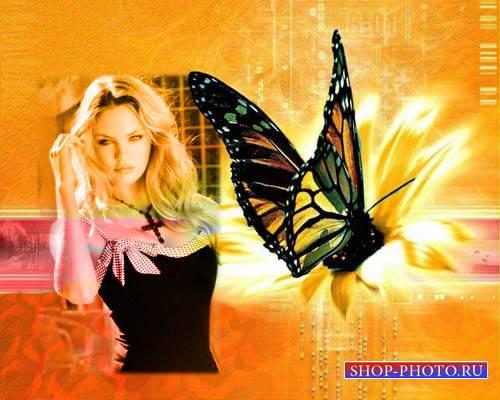 Женская рамочка - Компьютерная бабочка