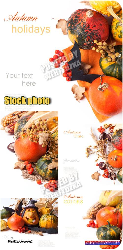 Праздник осени / Celebration of Autumn - stock photos