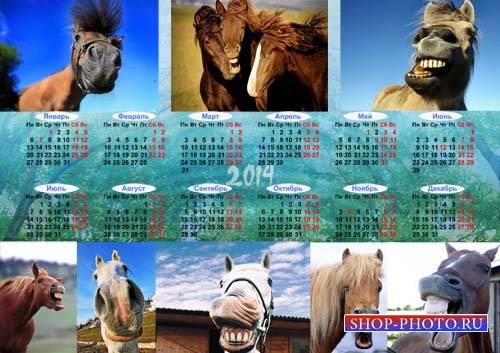 Красивый календарь - Смешные лошадки