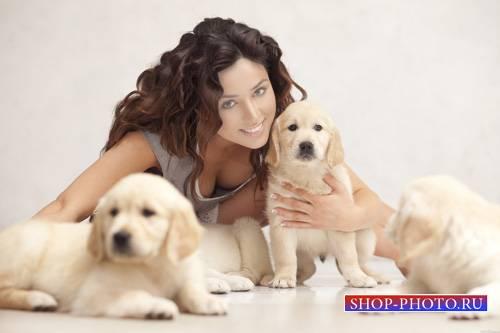 Шаблон для девушек - Фотосессия с симпатичными собаками