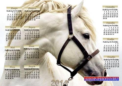 Календарь psd - Великолепная лошадь