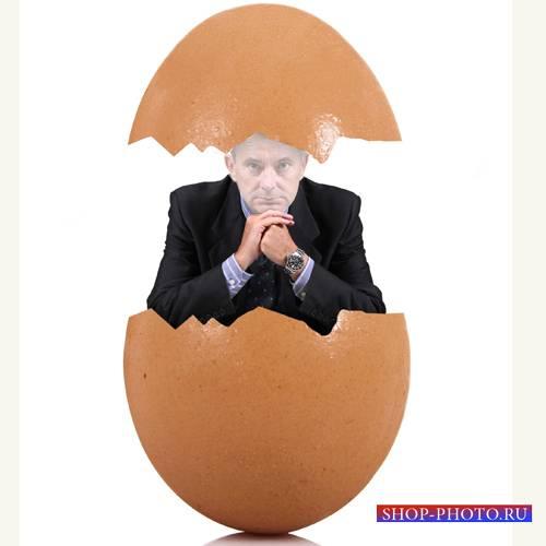 Шаблон для фотошоп - Креативное яйцо