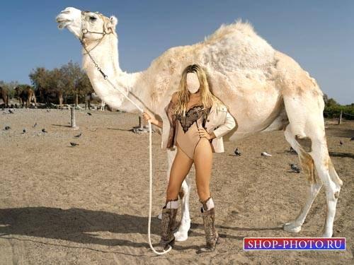 Шаблон для фотомонтажа - Шикарная девушка с белым верблюдом