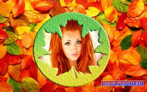 Рамка для фотографии - Яркие листья