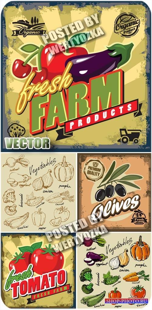 Этикетки с овощами, винтаж / Label with vegetables, vintage - stock vector