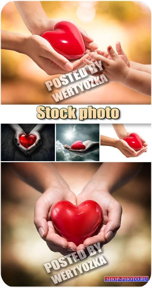 Красное серде в руках / Red cardiovascual in hands - stock photo