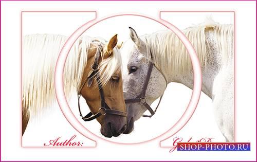 Овальный триптих в psd формате - Две лошади