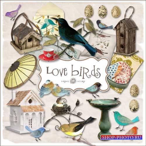 Скрап-комплект - Люблю птиц