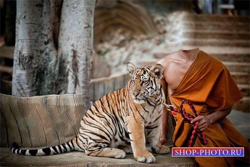 Шаблон мужской - Красивый тигр