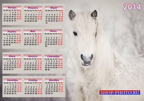 Красивый календарь - Прекрасная белоснежная лошадь