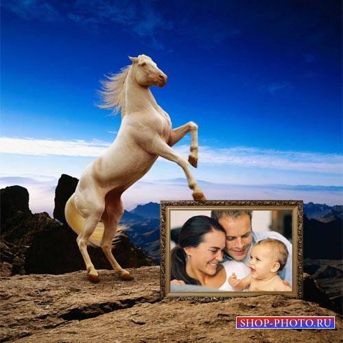 Рамка для фотомонтажа - Игривая лошадка на прекрасном фоне