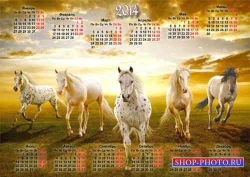 Настенный календарь - Табун коней