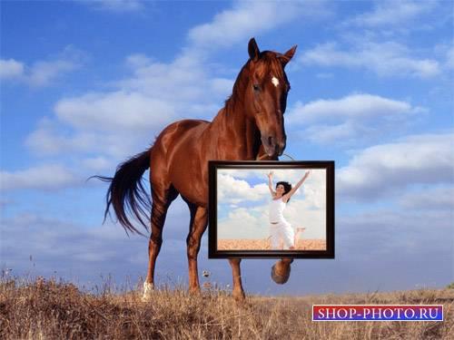 Рамка для фотомонтажа - Лошадь несет картину с вашим фото