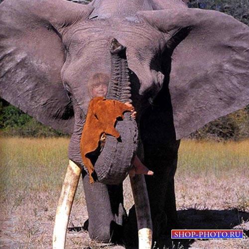 Шаблон для фотомонтажа - Поездка на слоне