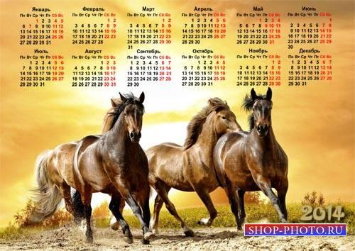 Календарь на 2014 год - Табун красивых лошадей