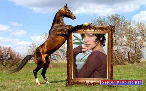 Рамка для фотошоп - Вороной держит ваше фото
