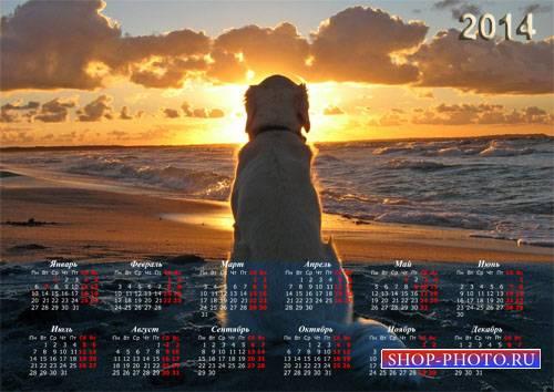 Настенный календарь - Собачка у воды любуется закатом