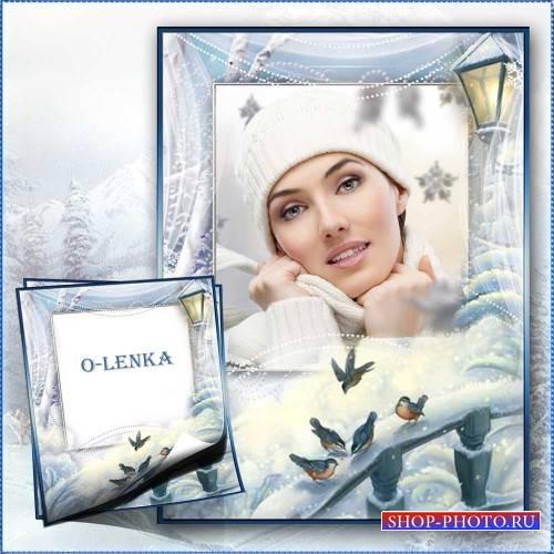 Рамка для фотошопа - Серебристые нити зимы