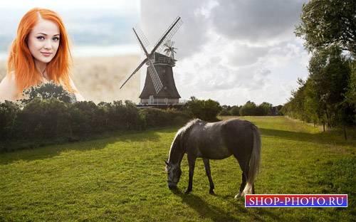 Рамка для фотошопа - На зеленой поляне пасется лошадка возле мельницы