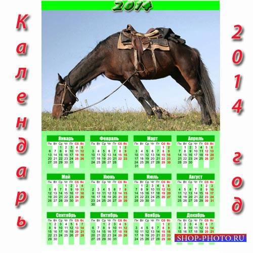 Календарь 2014 - Лошадь на отдыхе