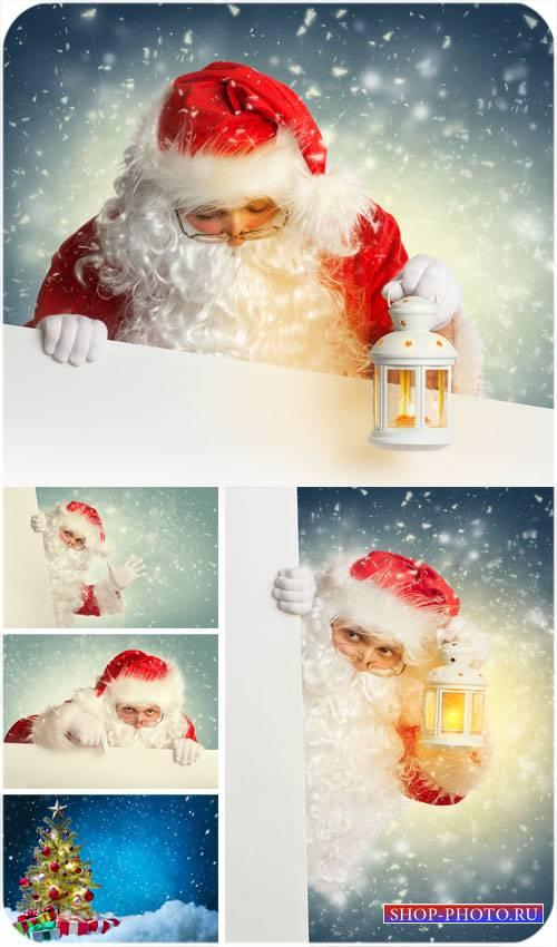 Санта клаус и новогодняя елка - сток фото