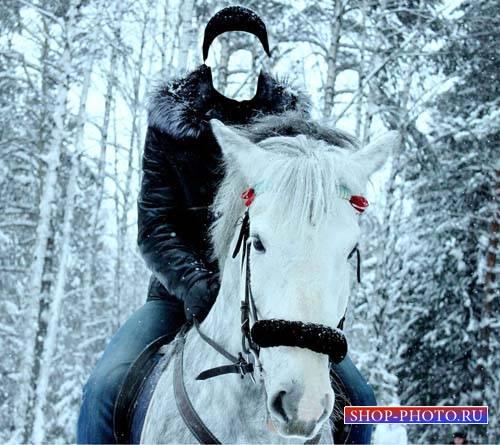 Шаблон psd - Фотосессия на коне в зимнем лесу
