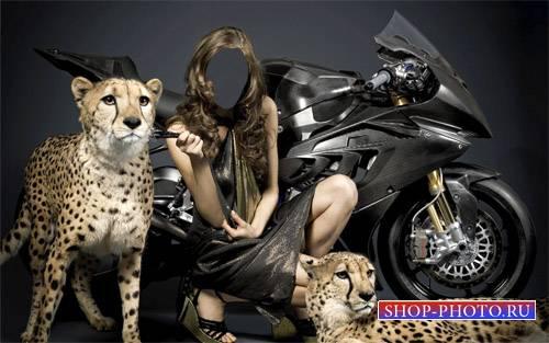 Шаблон psd женский - Фото с 2 гепардами у скоростного байка