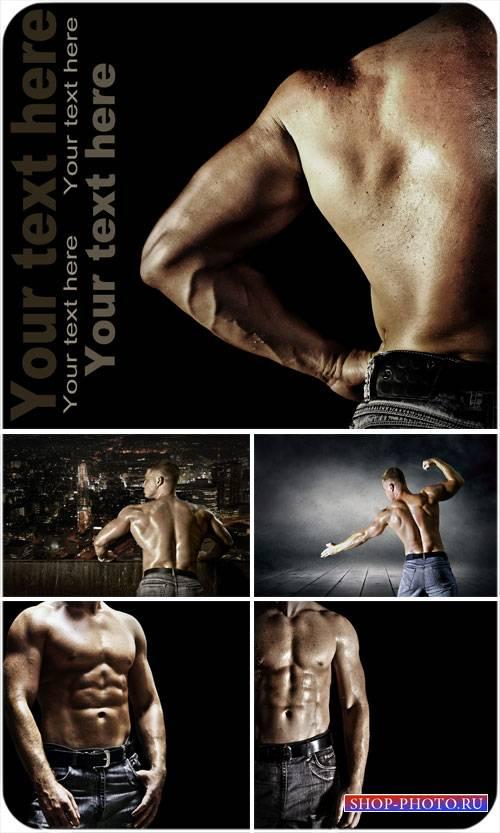 Красивое мужское тело - сток фото