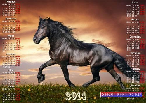 Красивый календарь - Бегущая галопом лошадь на закате
