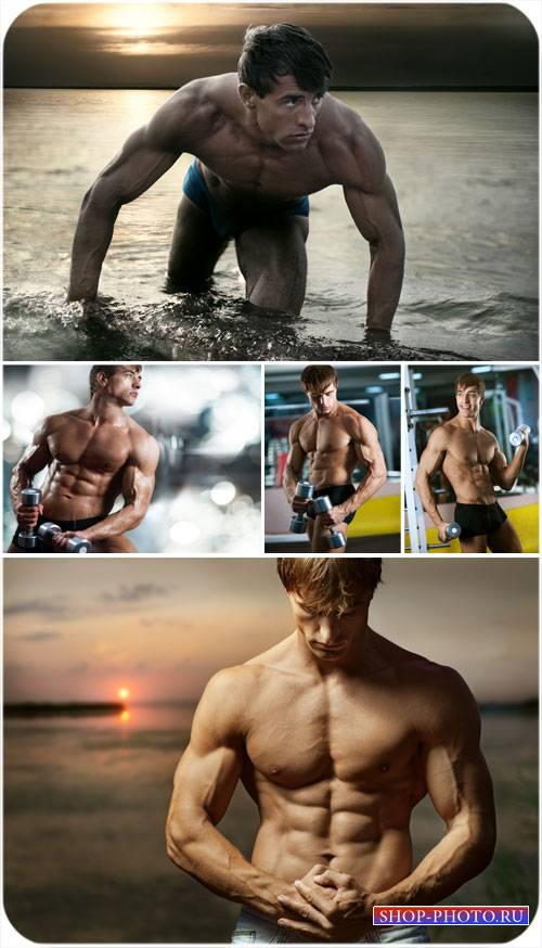 Мужчина на фоне заката, спортивные мужчины - сток фото