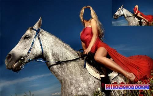 Шаблон для photoshop - На коне в маковом поле