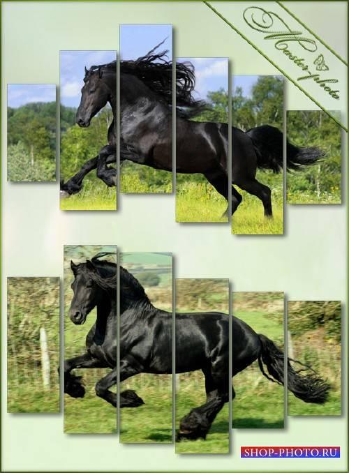 Psd исходник полиптихи - Лошадь гнедая