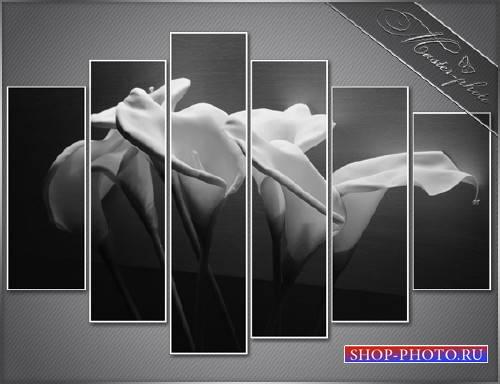 Полиптихи psd исходник - Нежный цветок