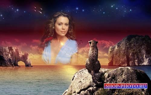 Рамка для фото - Леопард на закате у моря смотрит на вас