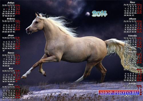 Календарь 2014 - Бегущая лошадь