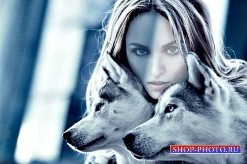 Женский шаблон - Фотосессия с двумя красивыми волками