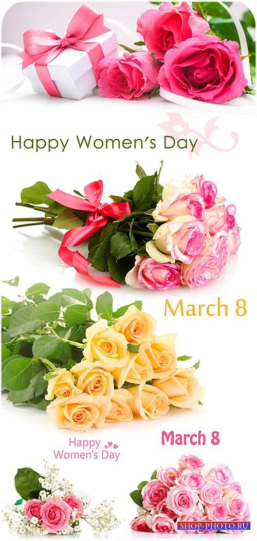 Розы на день матери, 8 марта - сток фото