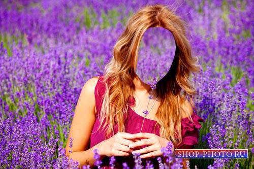 Шаблон для Photoshop - Милашка в поле лаванды