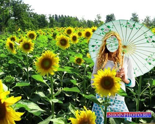 Шаблон для фото - Девушка в поле подсолнухов