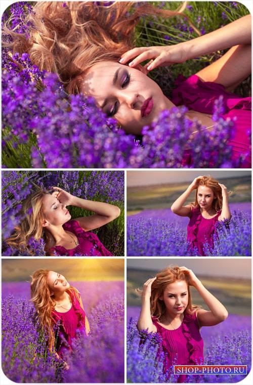 Девушка на цветочном поле, сиреневые цветы - сток фото
