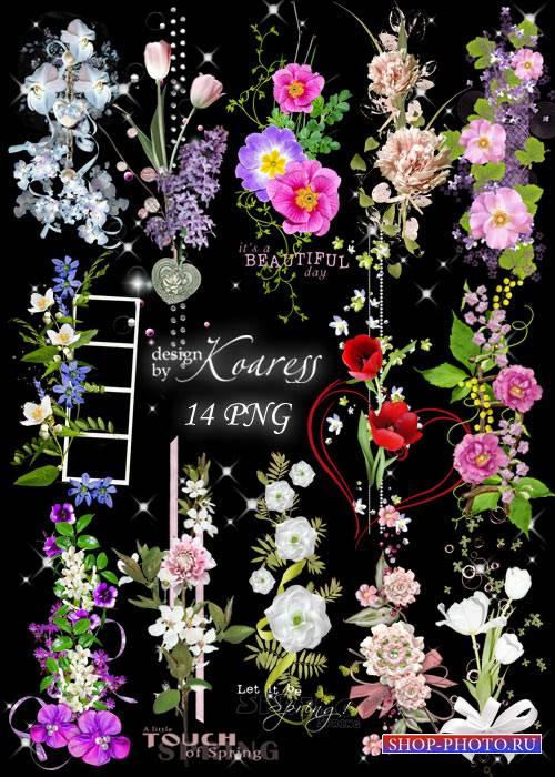 Набор цветочных png кластеров на прозрачном фоне - Цветочная феерия