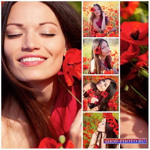 Девушка с красными маками - сток фото