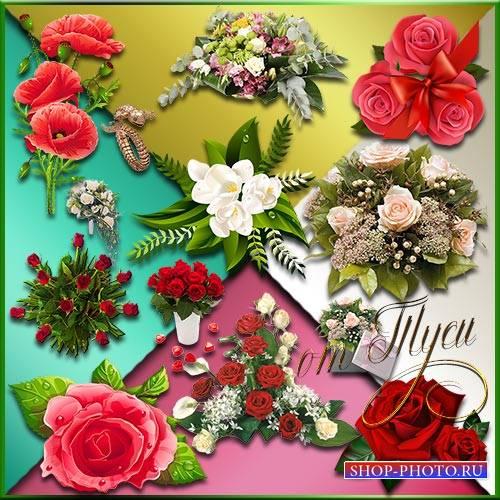 Клипарт - Все цветы прекрасные