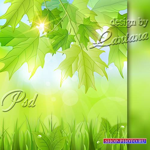 PSD исходник - Весна, лист зеленеет молодой