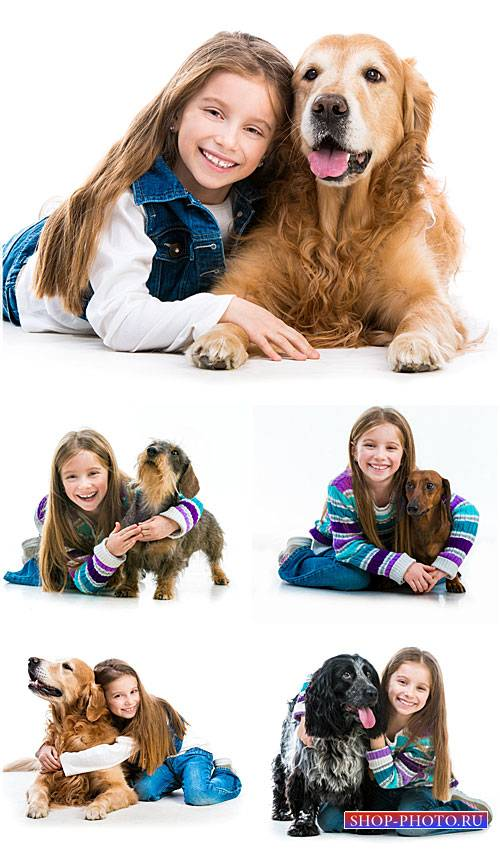 Девочка с породистыми собаками / Girl with pedigreed dogs - Stock photo
