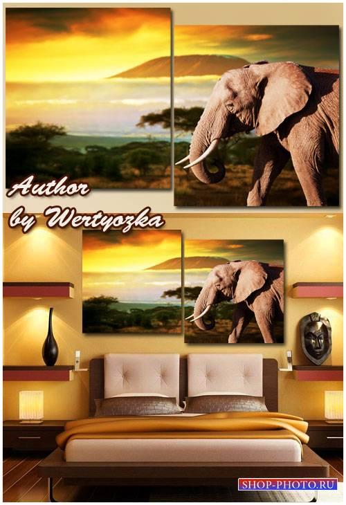 Модульная картина, диптих - Слон,чудесный закат