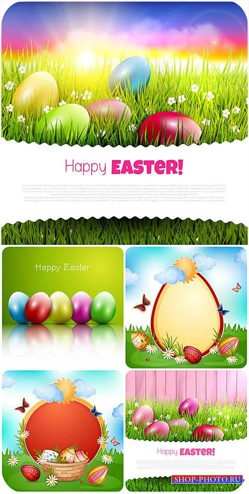 Пасхальный вектор с пасхальными яйцами, цветами и бабочками / Easter backgr ...