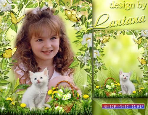 Детская рамочка - Белый маленький котёнок