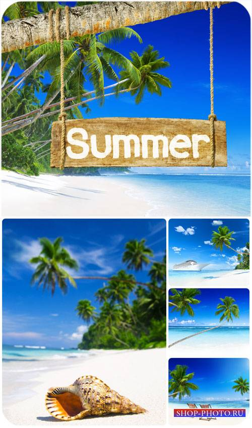 Лето, море, пальмы / Summer, sea, palm trees - Stock Photo
